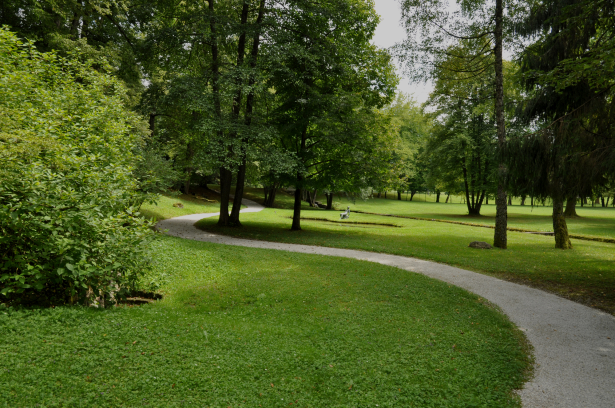 A winding footpath goes through a park that is filled with green trees and green grass
