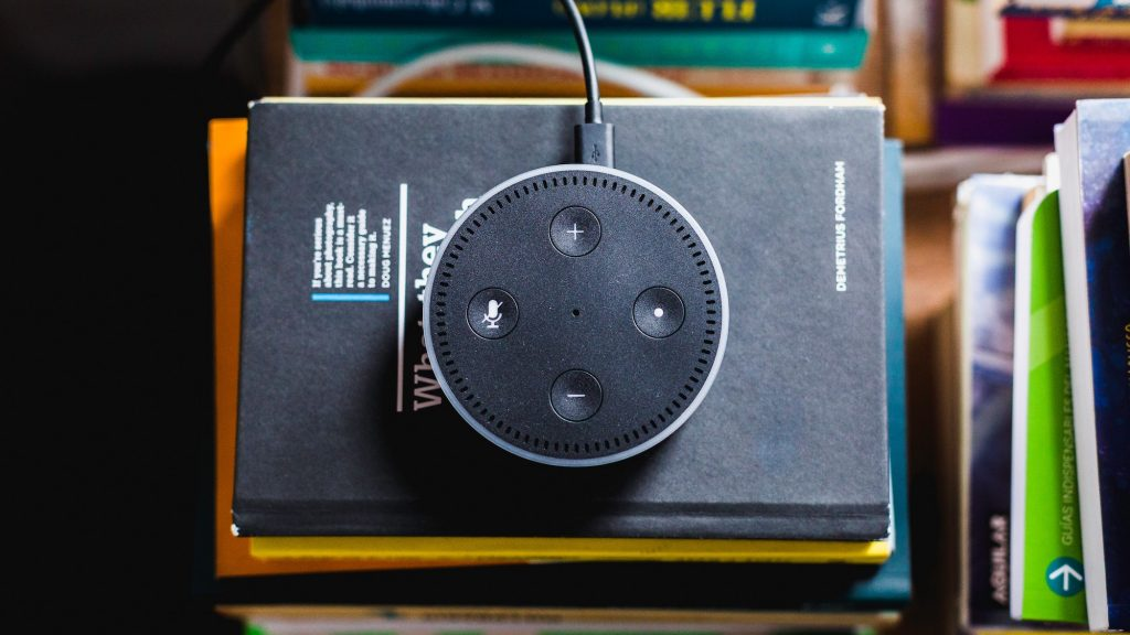 Photo from above, of Alexa on stack of books