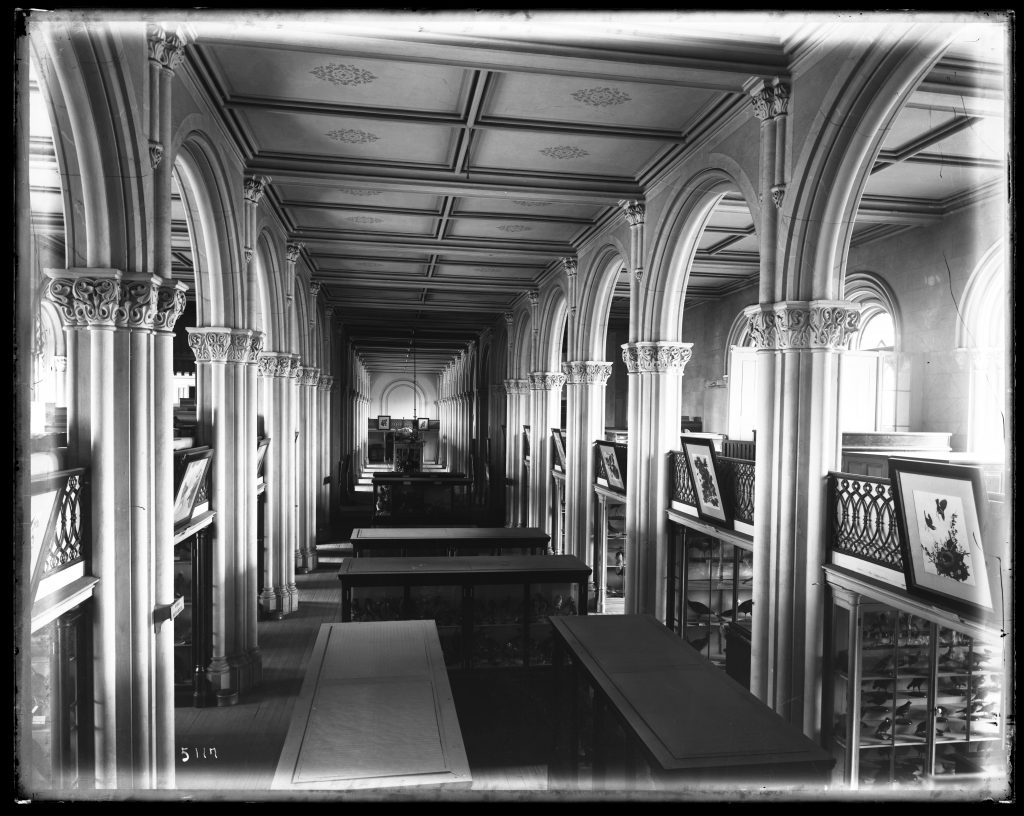 old black and white photograph of an old Smithsonian great exhibition hall housing paintings