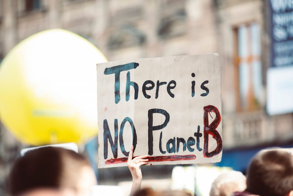 """Person holds up a sign saying """"there is no planet b"""" in a crowd of climate change protesters"""