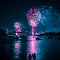 Pink and white fireworks above a dark blue city scene, rivers on a boat are shown in the foreground